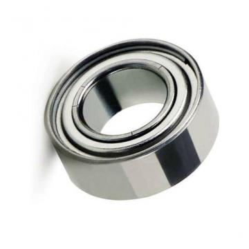 2216 China Manufacturer Stainless Steel Needle Roller Bearing Bk2216 HK2216